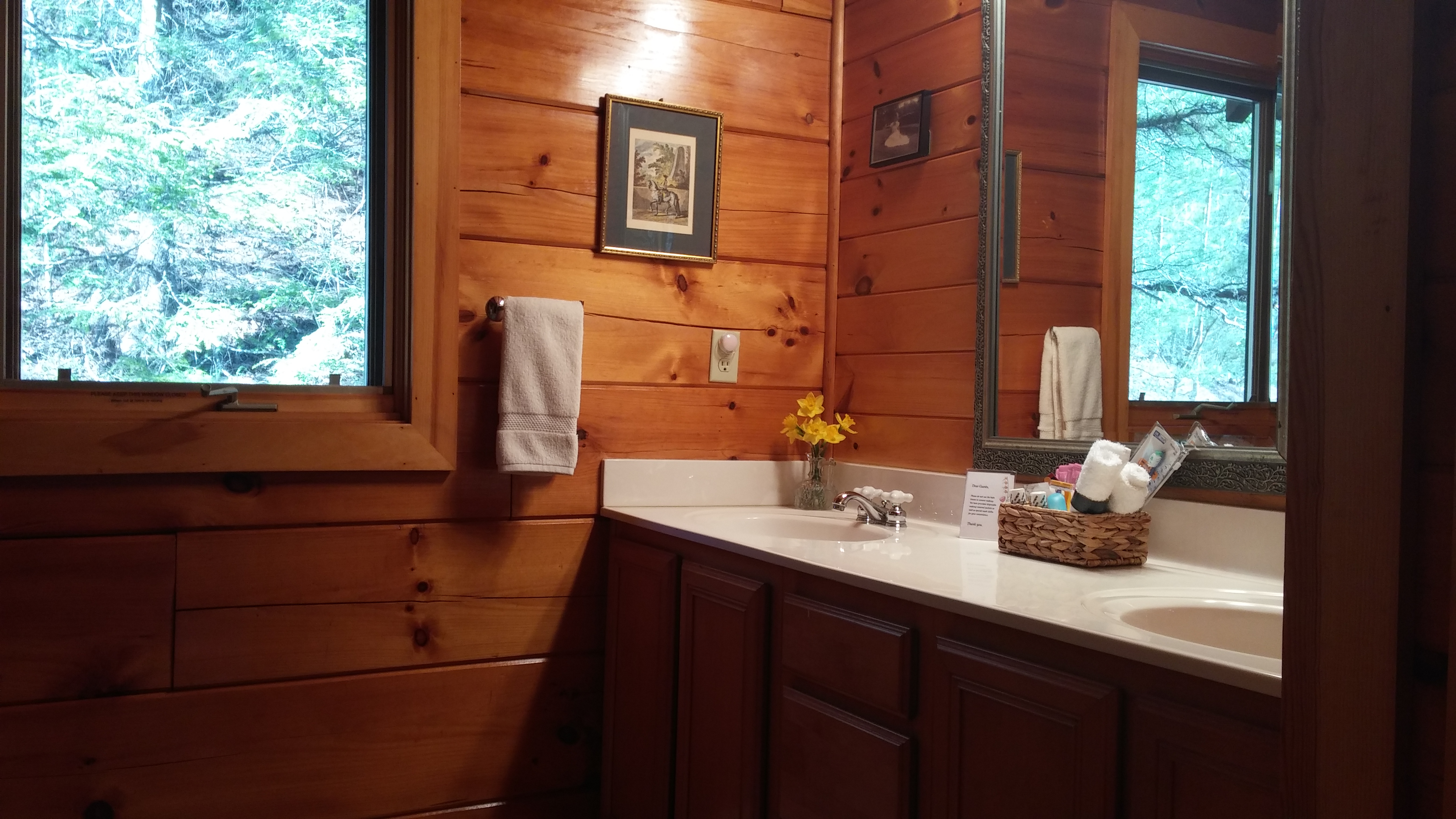 highlands in with creek cabin rentals indoor cabins beech on north brevard hot nc for tub mountain carolina pool